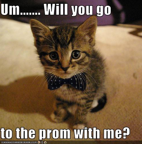 Prom Season Brings Creative Proposals