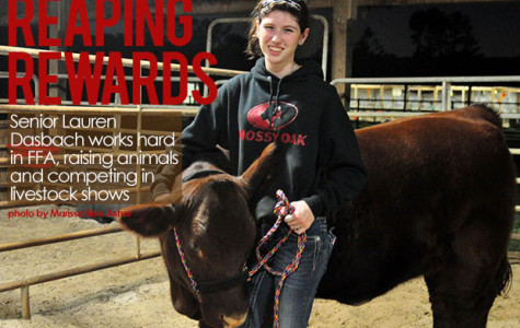 Senior Herds Accomplishment In Livestock Competitions