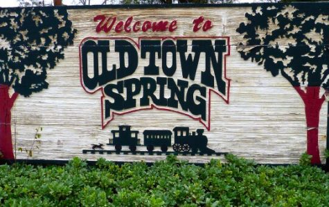 Top Seven Local Places to Visit Over Spring Break